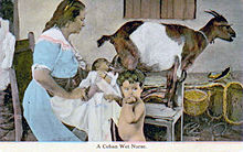 nursing a baby with a goat